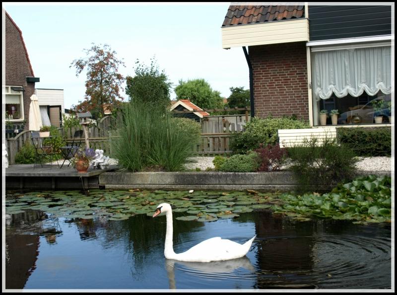 holland2 055.jpg