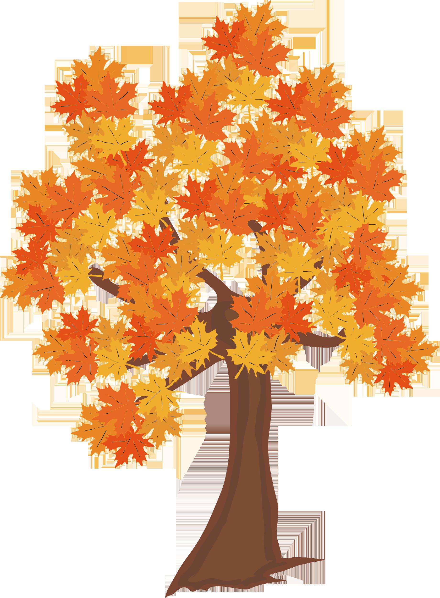 Клен фото осень