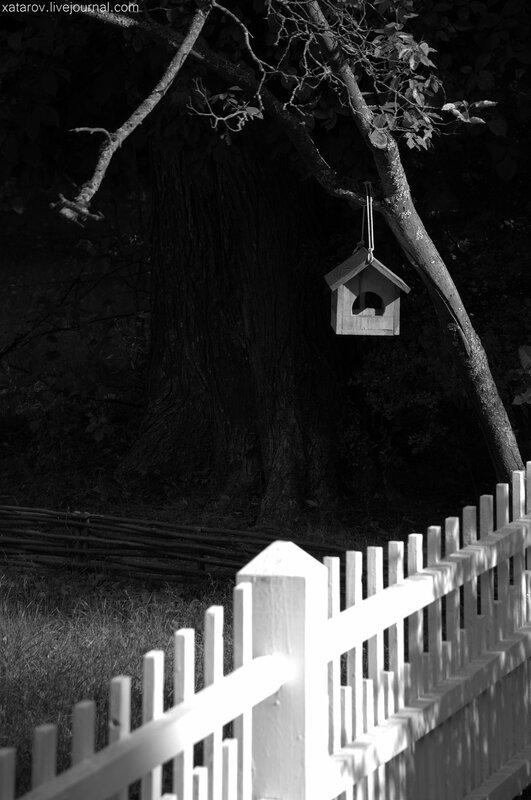 государственный мемориальный историко-художественный и природный музей-заповедник художника Василия Поленова
