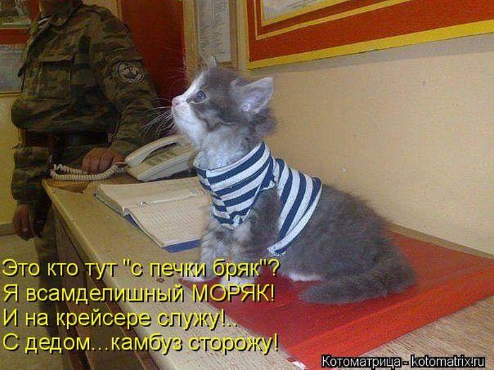 1368959929_kotomatrix_38.jpg