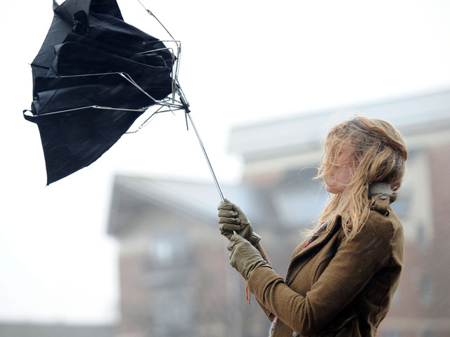 3 человека пострадали в Москве из-за сильного ветра