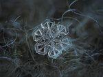 Снежинка ушедшей зимы