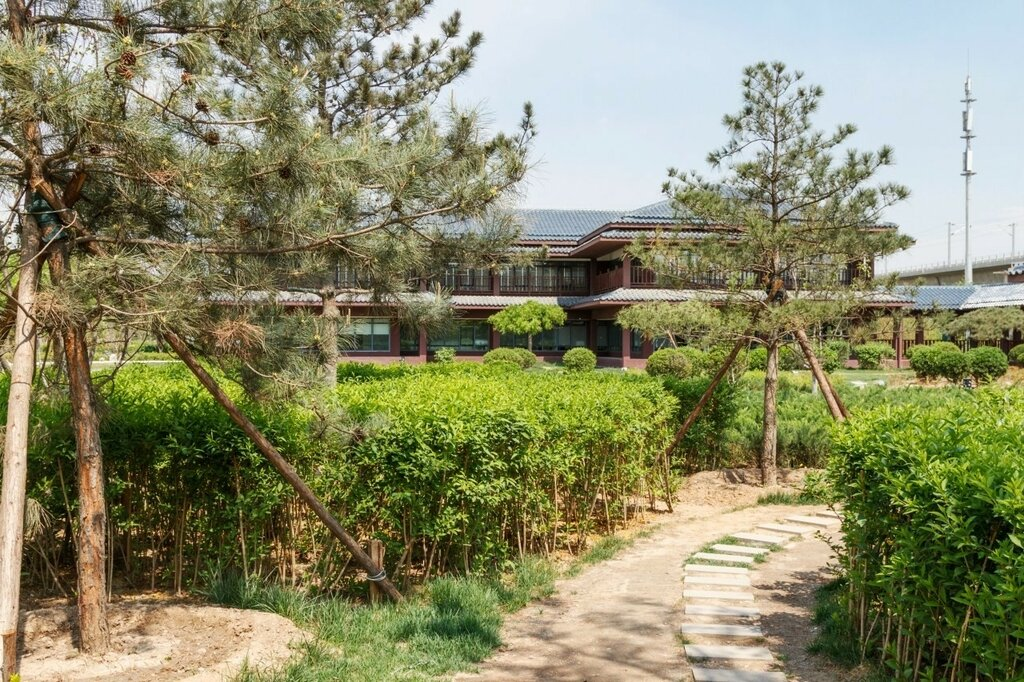 Сад эпохи Тан, Парк-выставка садов