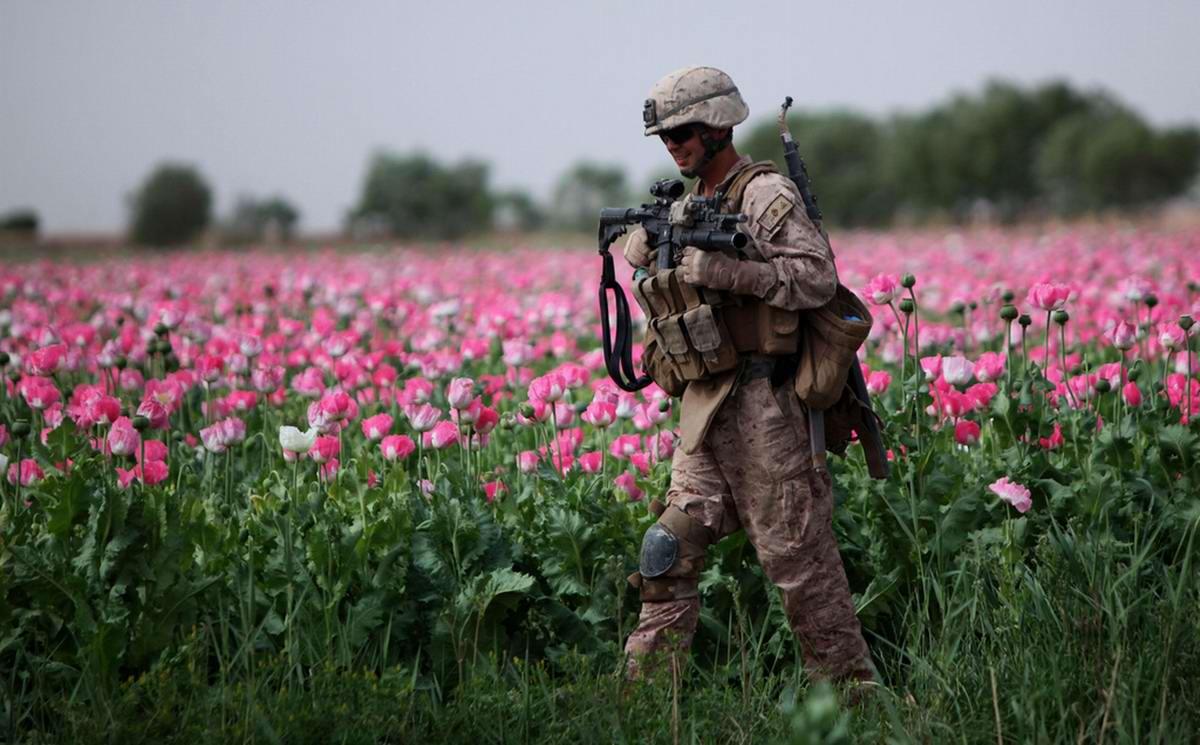Посреди маковых полей Афганистана - фотографии военнослужащих корпуса морской пехоты США (15)