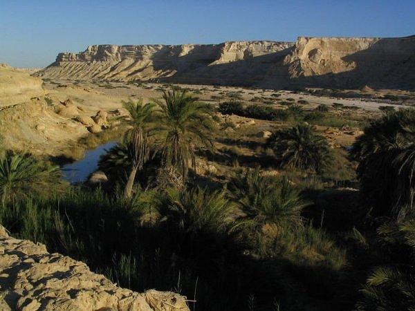 Оазис в Омане