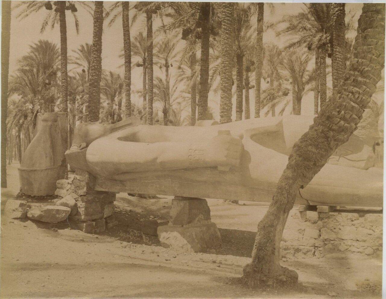 Статуя Рамзеса. 1875