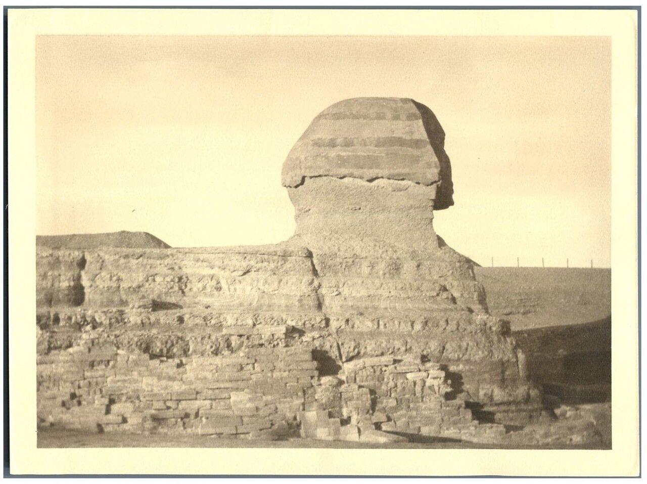 Гиза. Сфинкс. 1875.