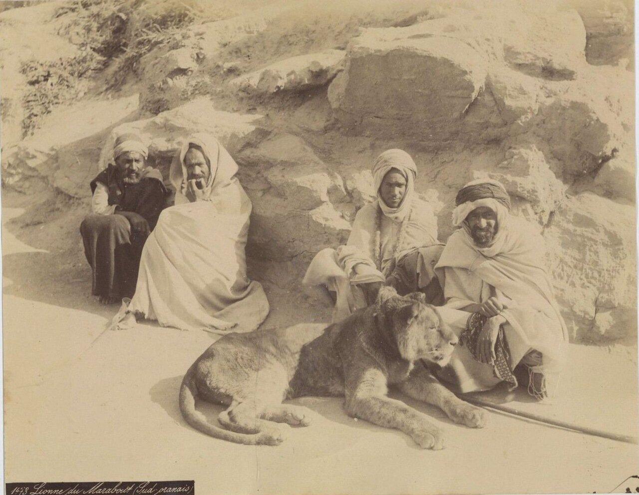 1875. Арабы Южного Орана