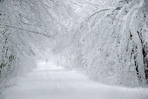 зима.jpg