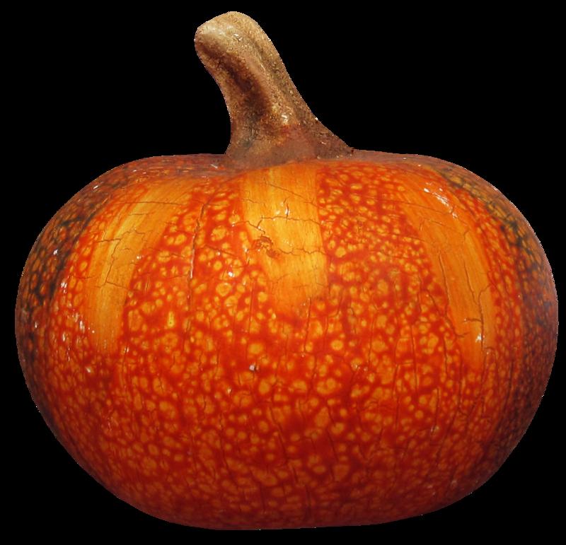 feli_joa_pumpkin.png