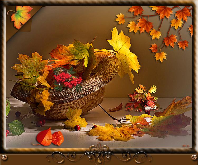 http://img-fotki.yandex.ru/get/6840/230148220.a8/0_15c7b7_71611692_XL.png