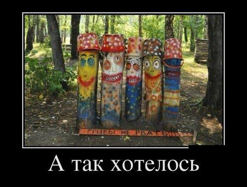 podborka_luchshih_demotivatoro_2169106[1].jpg