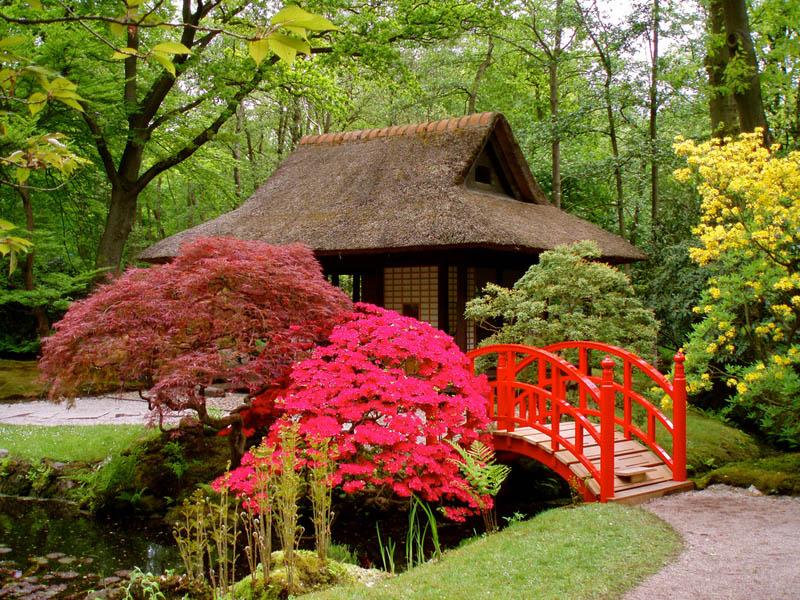 японский дизайн сада