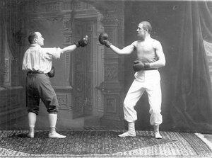Боксеры в момент боя