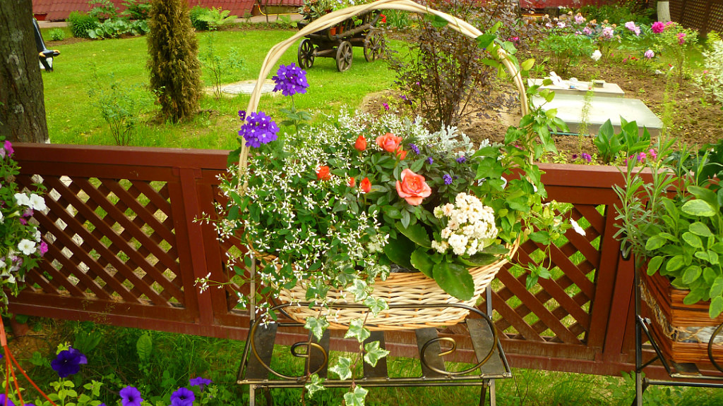 Царство цветов
