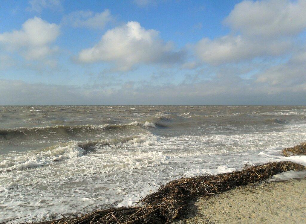 Свежий ветер от моря ... SAM_5713.JPG
