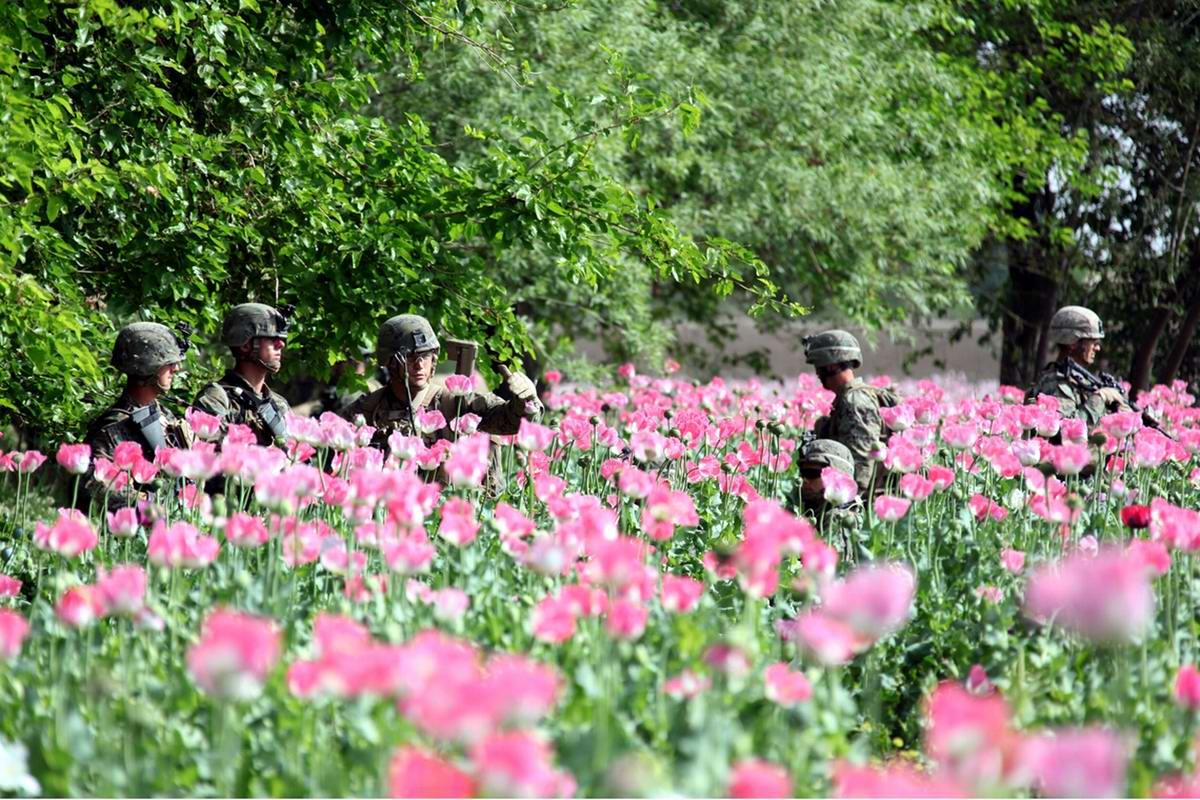 Посреди маковых полей Афганистана - фотографии военнослужащих корпуса морской пехоты США (2)