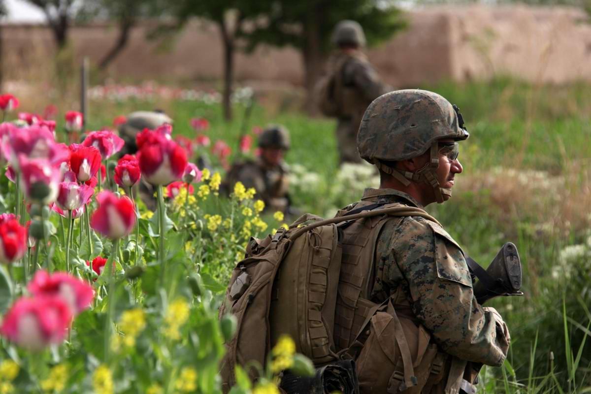 Посреди маковых полей Афганистана - фотографии военнослужащих корпуса морской пехоты США (13)