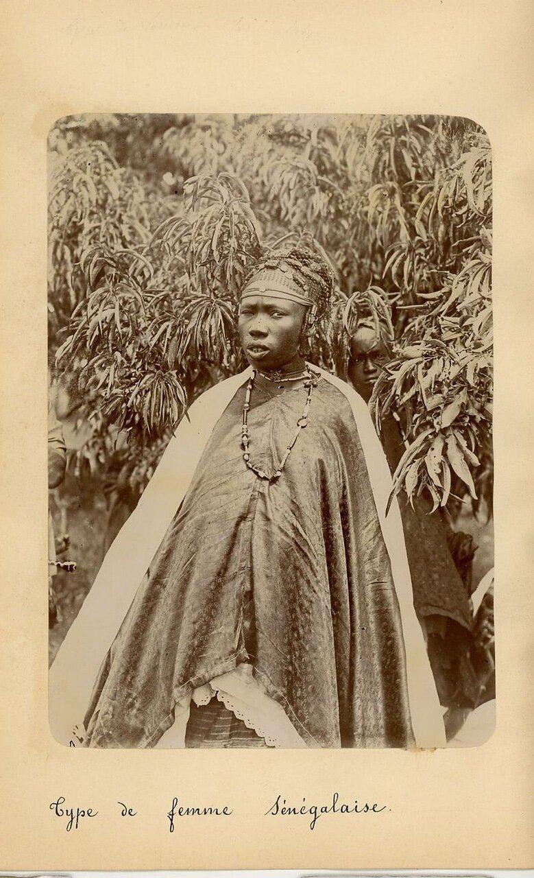 Типы сенегальских женщин. 1890