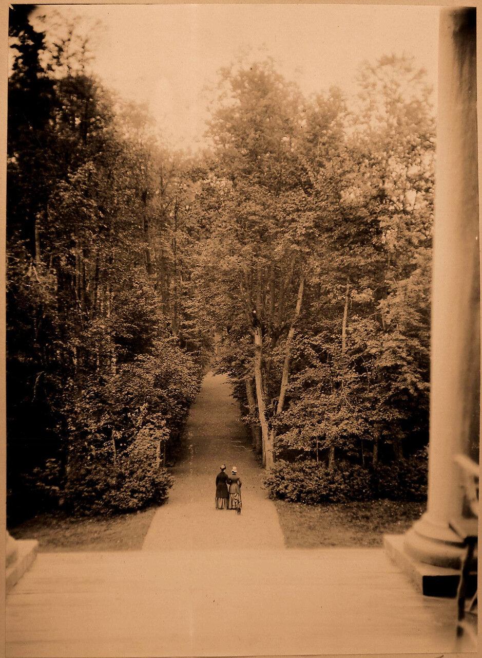 10. Вид на липовую аллею с крыльца усадебного дома