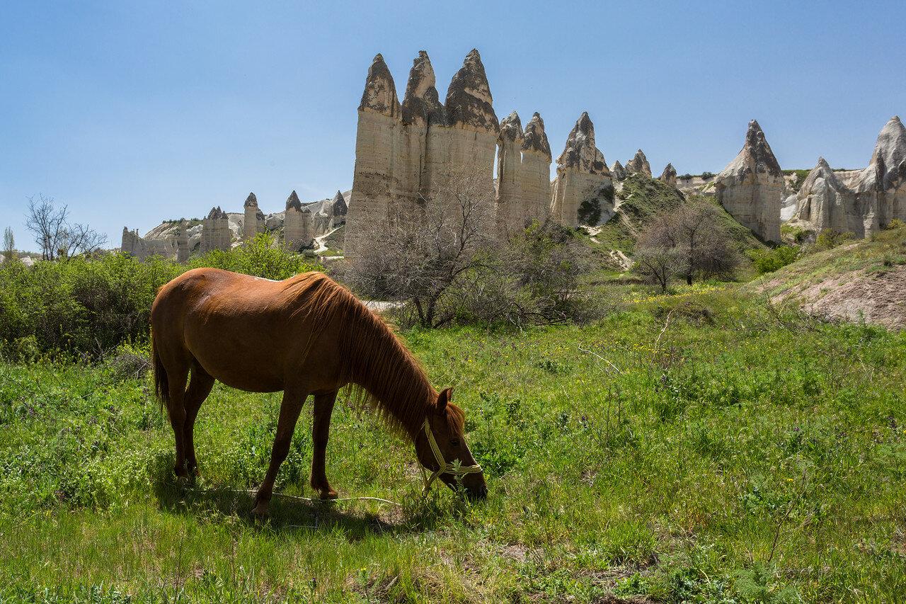 cappadocia-9639.jpg