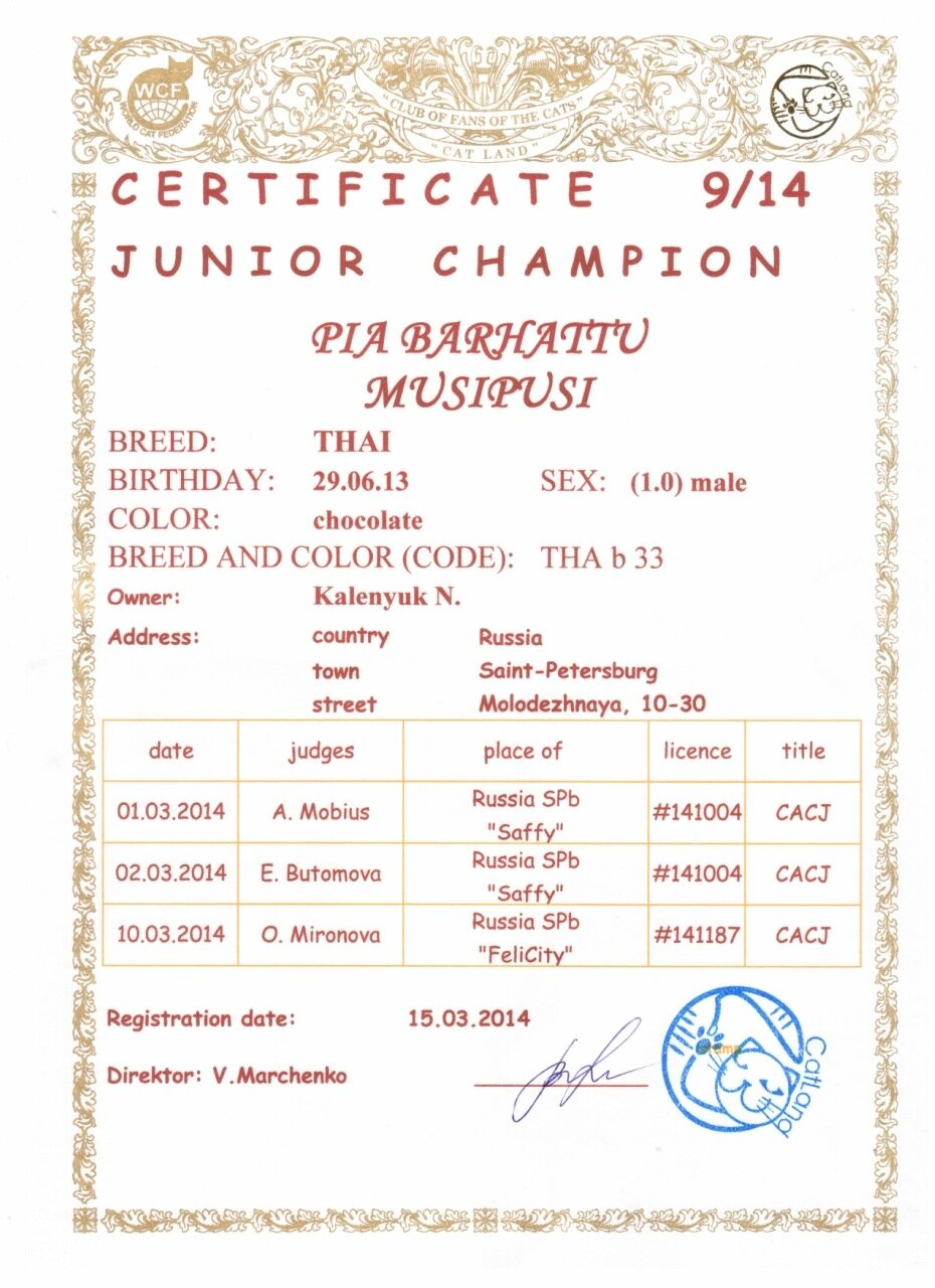 Сертификат CACJ.jpeg
