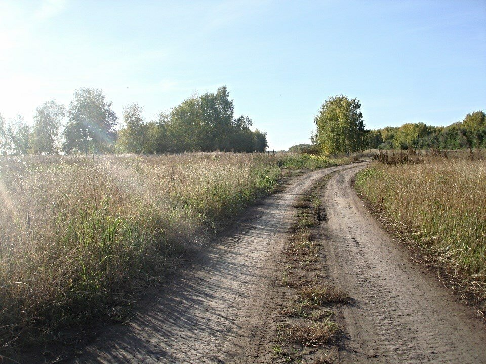 проселочная деревенская дорога