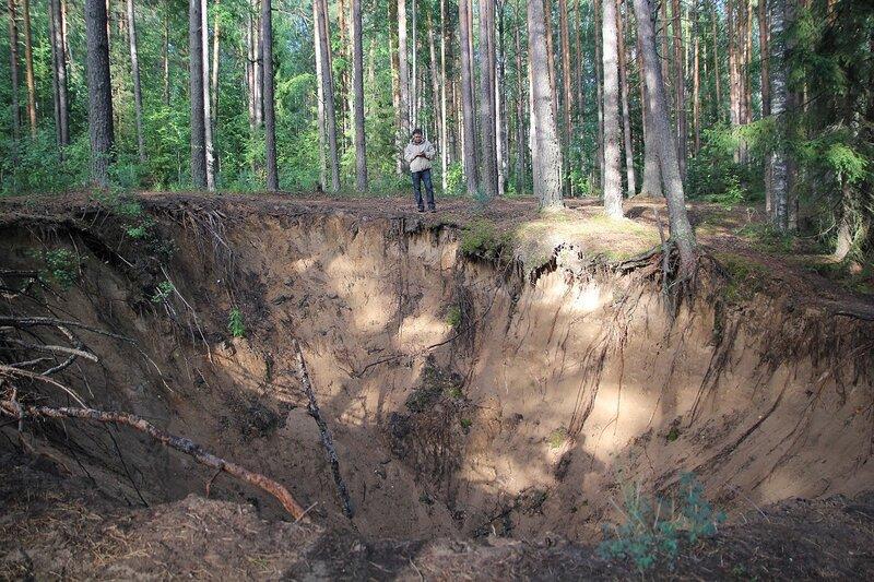Воронка в Медведском бору рядом с карстовым озером Чваниха («Провалы»)