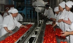 Консервный завод в Криулянах закрыт, после введения эмбарго