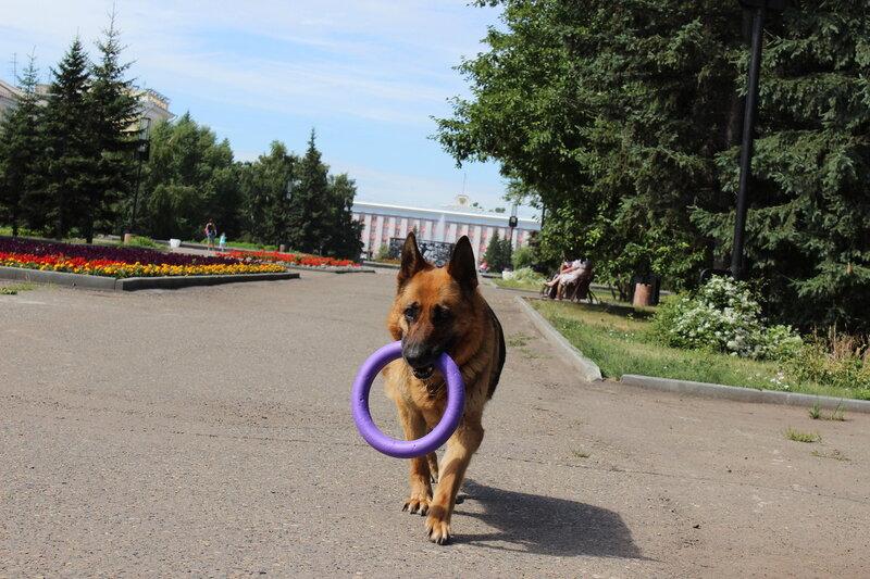 http://img-fotki.yandex.ru/get/6842/134559744.20/0_ca122_f182a0ca_XL.jpg