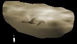 летящие птицы.png