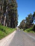 Последние км до Сантьяго.