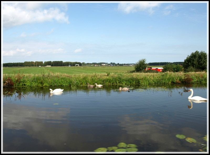 holland2 064.jpg