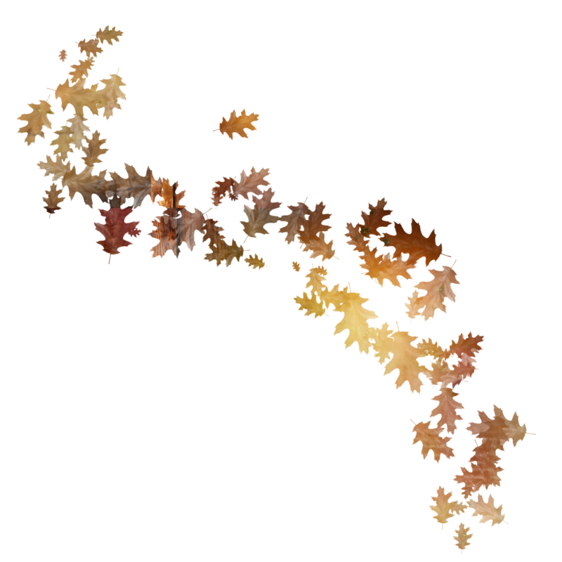 StarLightDesigns_AutumnSunshine_elements (2).png