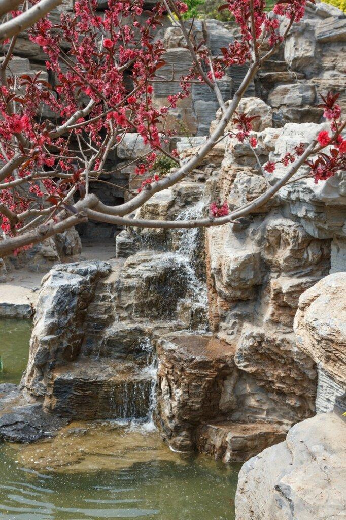 Красная слива и водопад