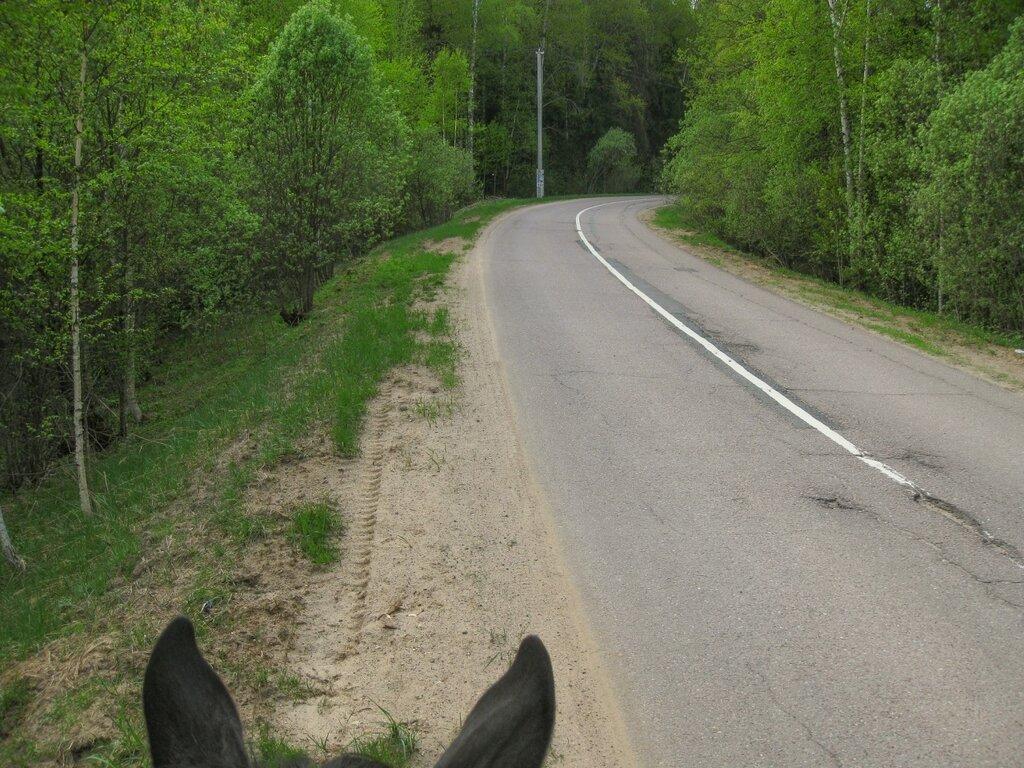 Дорога из Долгинихи