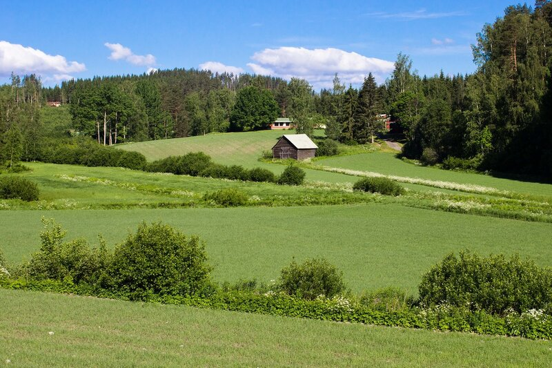 летняя финляндия