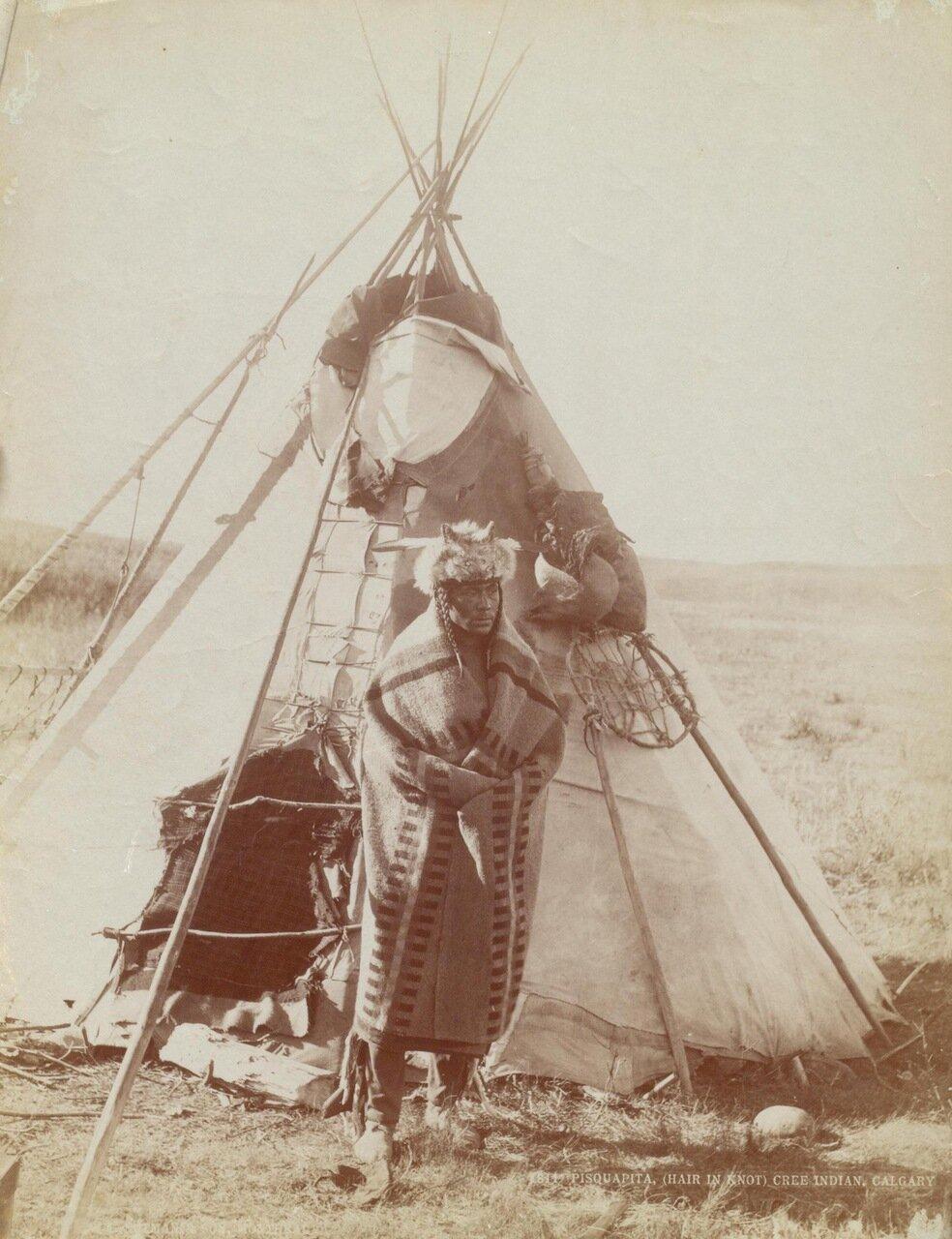 Индеец племени кри