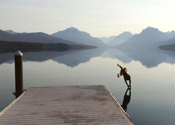 водная гладь, прыжок в воду