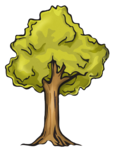 PGreif_tree.png
