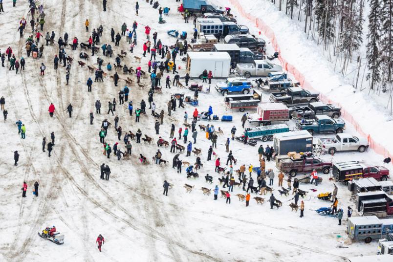Гонки на упряжках, Аляска, март 2015 года