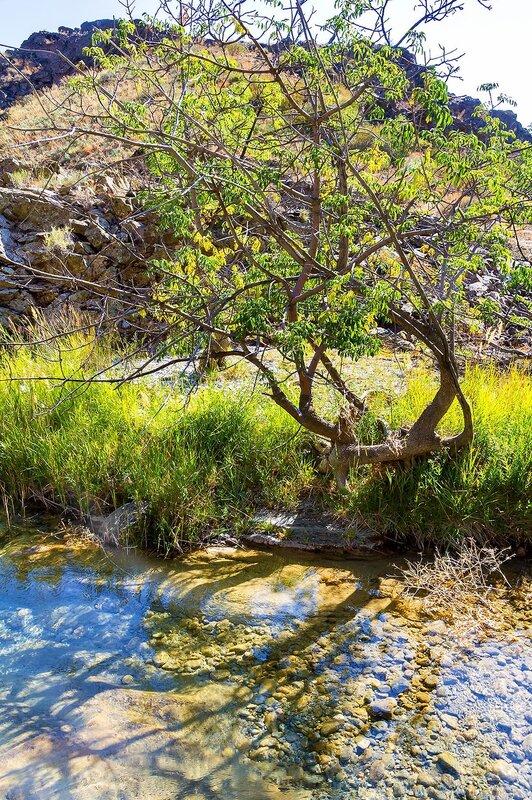 Природа Жылаганата