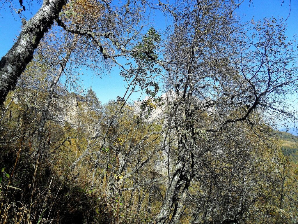 На тропах Большого Тхача