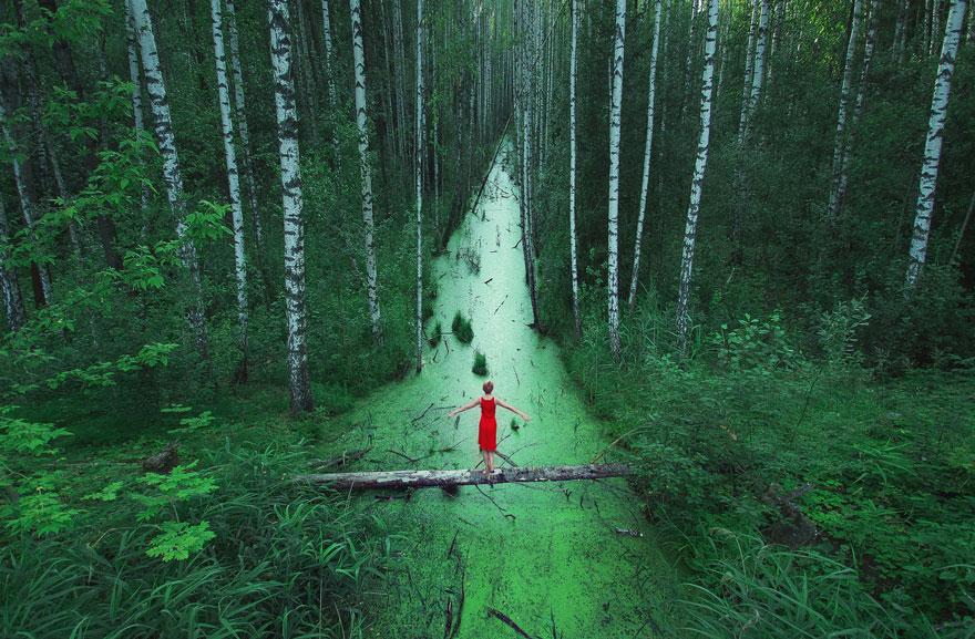 В лесах Белоруссии