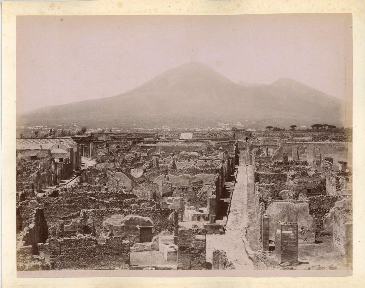 1875. Панорама города с видом Везувия