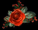 цветы (98).png