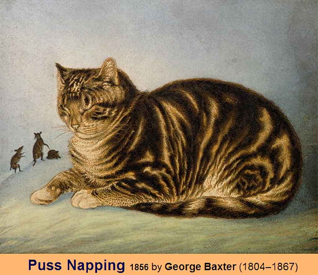 Кот дремлет 1856, цветная гравюра Джордж Бакстер (1804-1867).jpg Puss Napping 1856,  George Baxter