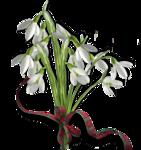 весенние цветы (24).png