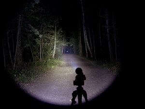 Подствольный дальнобойный охотничий фонарь - EagleTac S200C2 XM-L2 U2 светит так: Средний режим, iso 200