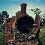 zCaliDesign_Train_Papers  (2).jpg